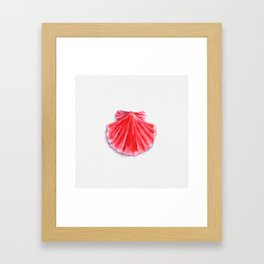 Red Clam Shell Framed Art Print
