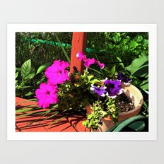 Pink and Purple flowers Art Print