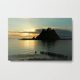 Waiting For The Night Metal Print