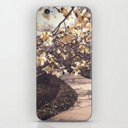 Brooklyn:  Meander to Magnolia iPhone Skin