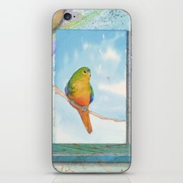 Song for Orange Bellied Parrot iPhone Skin