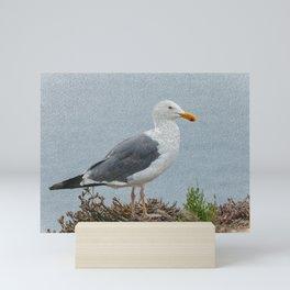 western gull - painting Mini Art Print