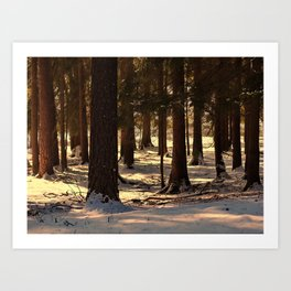 Winter in the Forest Art Print