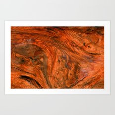 Wood Texture 530 Art Print