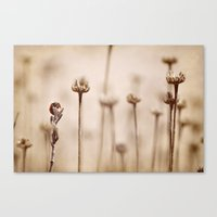 lonely Canvas Prints featuring Lonely by Guido Montañés