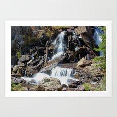 Roaring Falls Art Print