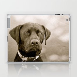 Maxwell Laptop & iPad Skin