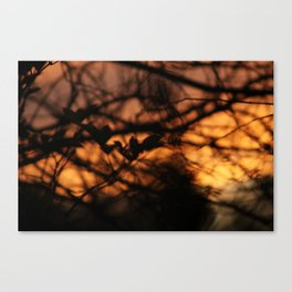 The Setting of the Evening Sun Canvas Print