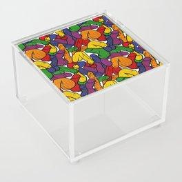 Schlong Song in Rainbow, All the Penis! Acrylic Box