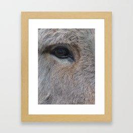 Donk-eye (I am so sorry for that) Framed Art Print
