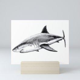 Great white shark (Carcharodon carcharias) Mini Art Print