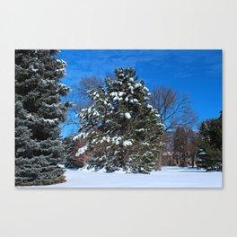 Tenacious Winter Canvas Print