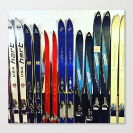 Vintage Ski Collection Canvas Print