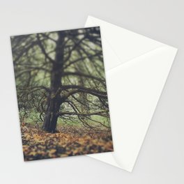 Autumn in the Woods Stationery Cards