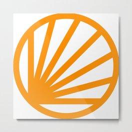 Circle dissected Metal Print