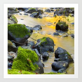 Grizzly Creek In The Fall Art Print
