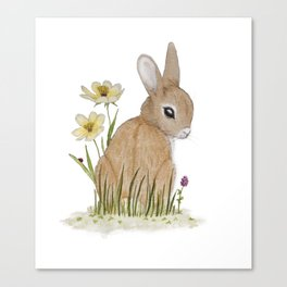 Rabbit Among the Flowers Canvas Print