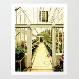Life in  a glass house Art Print
