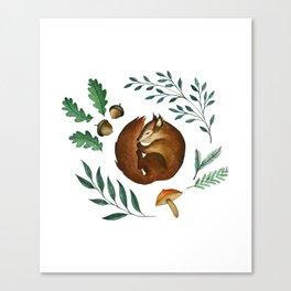 Sleepy Squirrel Canvas Print