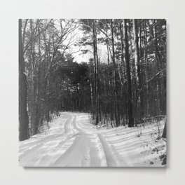 Hiking Views: What's Around The Bend? Metal Print