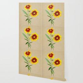 Tickseed Botanical Wallpaper