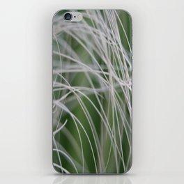 Rainforest Palm Tree Leaf Close Up  iPhone Skin