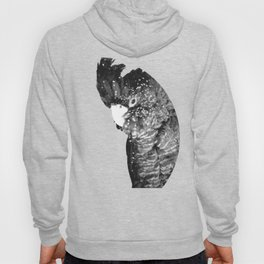 Black and White Cockatoo Illustration Hoody