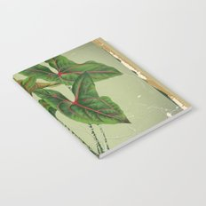 Grungy antique style  Botanical Art Notebook
