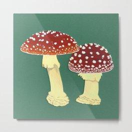 toadstools green Metal Print