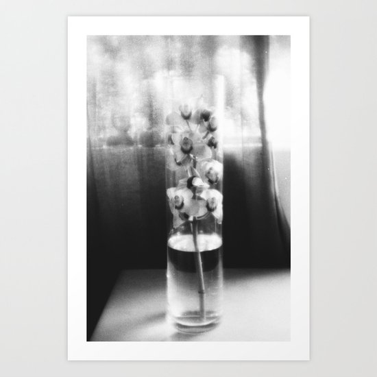 orchid in glass Art Print