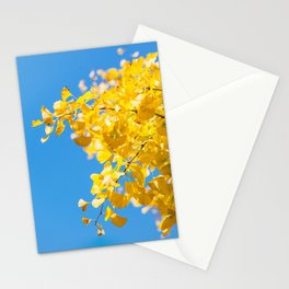 Sky and Leaf Stationery Cards