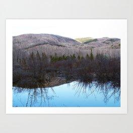 Reflecting Nature Art Print