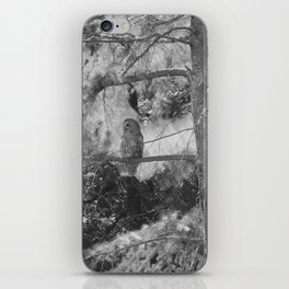 Owl Spirit in the Woods, Shades of Gray iPhone Skin