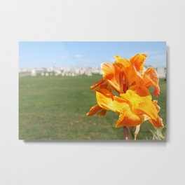 Cemetery Flower Metal Print