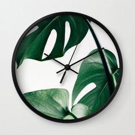 Plant, Green, Monstera, Leaf, Minimal, Trendy decor, Interior, Wall art, Photo Wall Clock