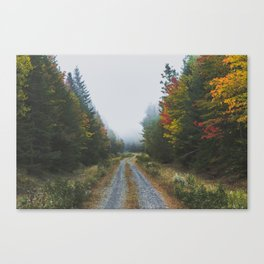 Looking for Moose Canvas Print