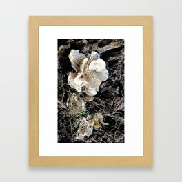 HAIRY COLLECTION (23) Framed Art Print