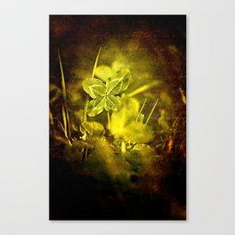 Lucky Canvas Print
