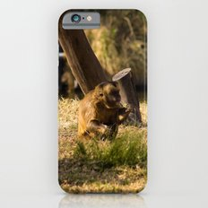 Monkey Business II iPhone 6s Slim Case