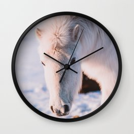 White Icelandic Horse in Snow Wall Clock