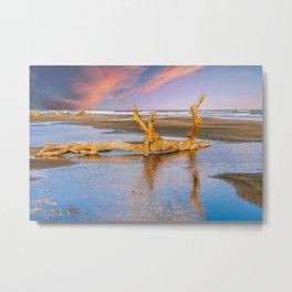 Driftwood on Beach in Late Day Sun Metal Print
