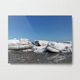 Icebergs and the big Dog Metal Print