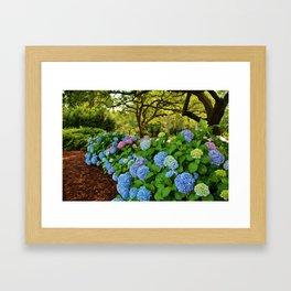 Colorful Pom-Poms Framed Art Print