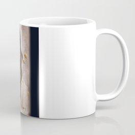 Bee Charmer Coffee Mug