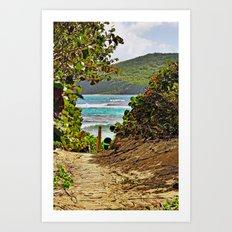 The Path to Paradise Art Print
