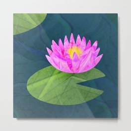 Pink Lily Pond Metal Print