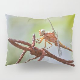 Nature in pastel shades Pillow Sham