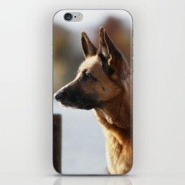 Working German Shepherd at a lake iPhone Skin