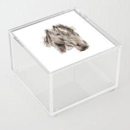 Horse Acrylic Box
