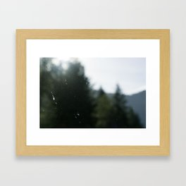 Light Through the Haze Framed Art Print